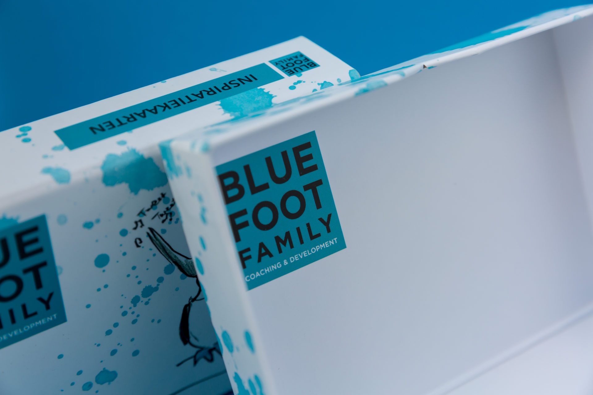 Blue Foot postdoosje